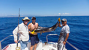 Sailfish, Fishing, Cabos San Lucas, Baja, Mexico