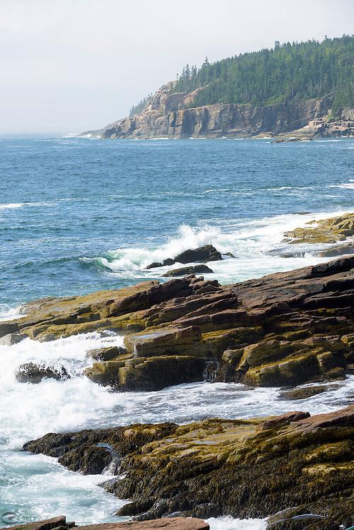 Rugged Maine Coast, Acadia National Park.