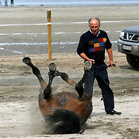 This owner had no choice but to wait as his horse decided he wanted to take a roll in the sand at the strand racing in Kilkee on Sunday.<br /><br /><br /><br />Photograph by Yvonne Vaughan.