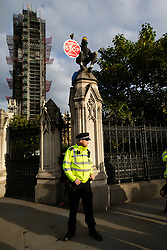 © Licensed to London News Pictures. 15/10/2019. London, UK. An Extinction Rebellion Protester sits on a pillar next to Carriage Gate at the Houses of Parliament. XR protesters are continuing their actions after being cleared from Trafalgar Square in central London. Photo credit: George Cracknell Wright/LNP