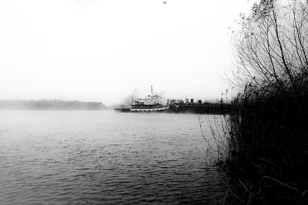 Tug pushes barge on waterway off Mississippi River, near Venice, LA.  Copyright 2011 Reid McNally.