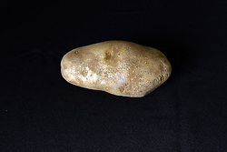 18 February 2016:   Studio - Potato on black #014.  A single baking potato shot in a studio on a black background.