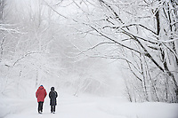 Couple walking in the fog in Snow covered Mont Royal Park in Winter, Parc du Mont Royal, Montreal, Quebec, Canada