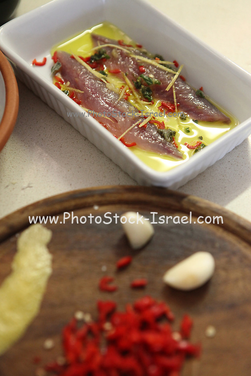 Raw Mackerel Fillet with herbs and spices