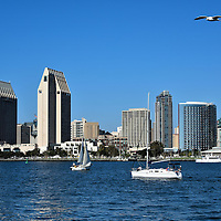 Skyline and Sailboats along San Diego Bay in San Diego, California <br /> San Diego Bay is a 12 mile waterway and harbor for a wide range of watercraft, from naval aircraft carriers, to commercial ocean freighters and lots of pleasure boats.  On a sunny day it is typical to see several sailboats floating slowly passed the skyline of downtown.