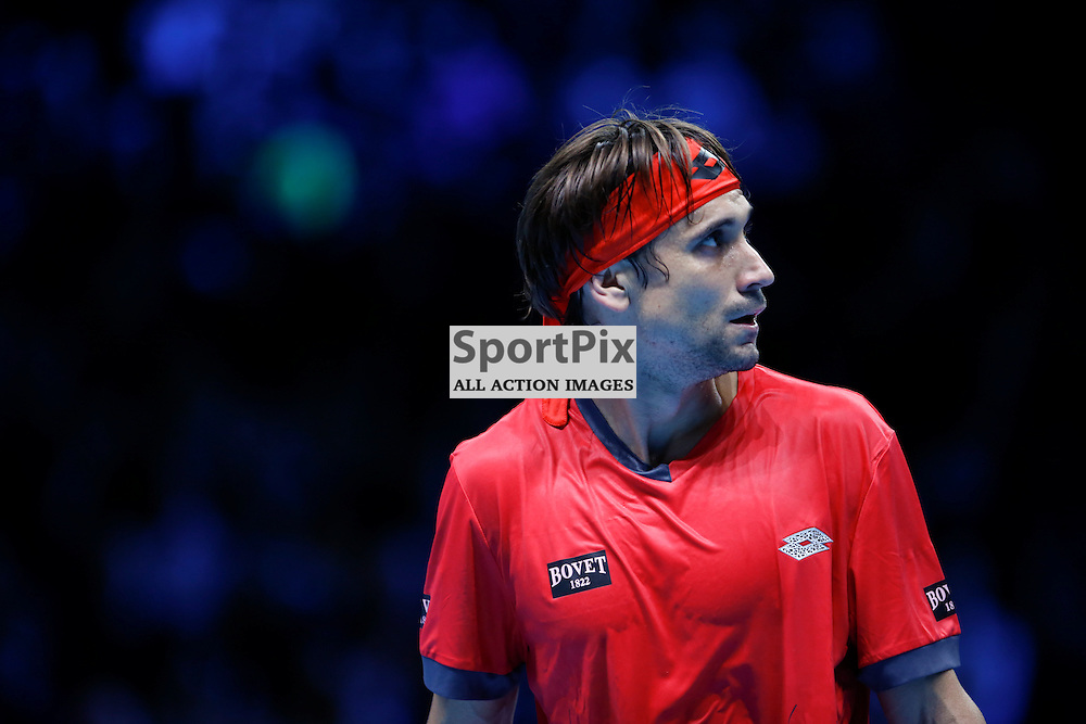 David Ferrer looks at the scoreboard during a match between Stan Wawrinka and David Ferrer at the ATP World Tour Finals 2015 at the O2 Arena, London.  on November 18, 2015 in London, England. (Credit: SAM TODD | SportPix.org.uk)