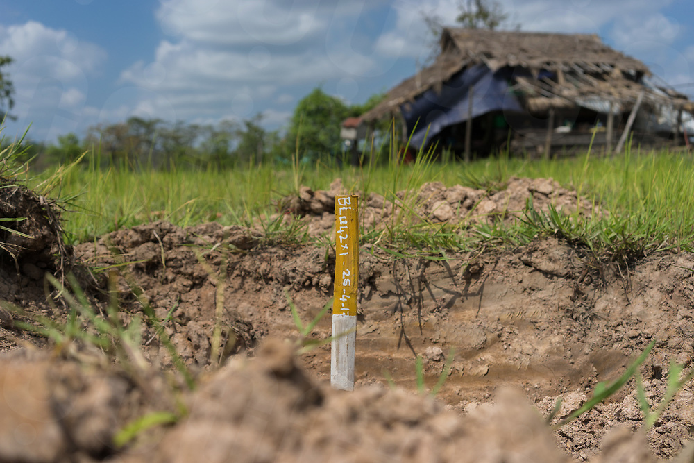 April 26, 2017 - Banlung (Cambodia). A painted stick is used to indicate the spot where an UXO (a BLU 42 - cluster submunition) was found and removed by a MAG (Mines Advisory Group) clearance team. The bomb was discovered in a rice field located just a few meters in front of the entrance of a house. This 40 year-old UXO is still extremely dangerous if it is hit with a plow or a how by a farmer. © Thomas Cristofoletti / Ruom