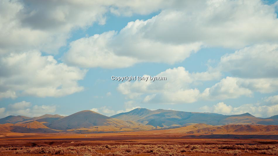 short grass prairie of eastern and central montana conservation photography - montana wild prairie
