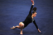 2009-2010 NCAA Women's Gymnastics