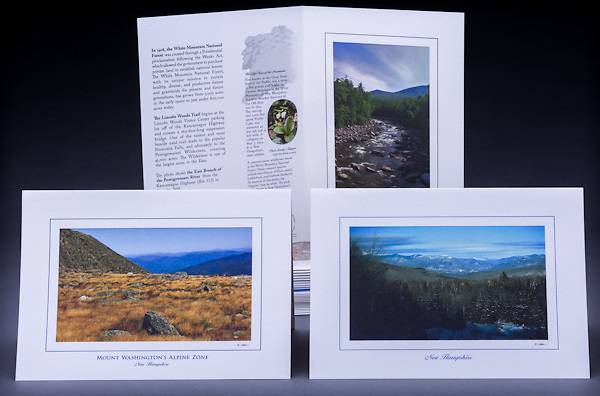 This collection of six cards includes two each of: Mount Washington's Alpine Zone, Winter in the Whites, and the Pemigewasset River in the White Mountain National Forest.<br /> <br /> Artemis Photo Greeting Cards featuring NH native flora and fauna and historic sites. The cards are made exclusively in NH made from 100% FSC recycled paper, manufactured with wind and water power, and are archival acid free paper. Each card includes details on the back about the image, including interesting anecdotes, historic facts, conservation status, and recipes.