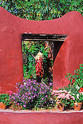 Morning light on chili ristra and potted flowers, Old Town, Albuquerque, New Mexico