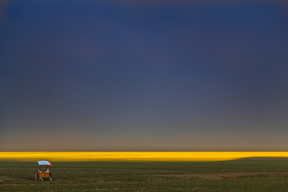 The sunset lights up part of the Gobi Desert in Mongolia after a rainstorm on July 31, 2012. © 2012 Tom Turner Photography