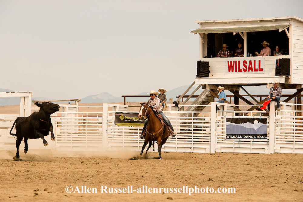 Wilsall Ranch Rodeo, Wild Cow Milking Competition, cowgirl, Milee Malone, Knock'em Flat Cattle Co team, Montana