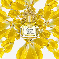 Vince Camuto (Divina)
