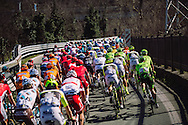The race passes over a rail crossing close to Ovada - Milano Sanremo 2016 (296 km)