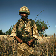 6th July 2007.Kajaki, Helmand Province, Afghanistan.Lance Corporal Andrew Howe (27) of 1 Royal Anglian C Coy on patrol in the Taliban infested region of Kajaki, Helmand Province, Afghanistan on the 6th of July 2007.