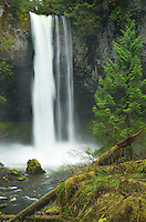Big Creek Falls, Gifford Pinchot National Forest, Washington