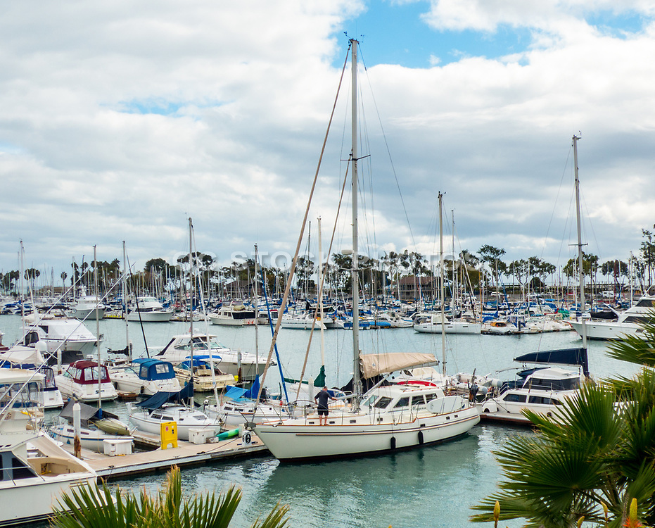 Boats At The Dana Point Harbor