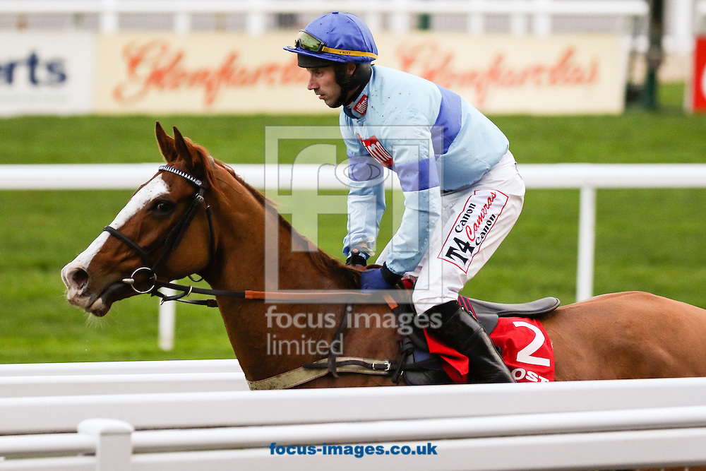 Wayne Hutchinson on Ulzana's Raid (Blue/Blue) after winning the Citipost Handicap Hurdle by a nose on the Friday of the International Meeting at Cheltenham Racecourse, Cheltenham<br /> Picture by Mark Chappell/Focus Images Ltd +44 77927 63340<br /> 12/12/2014