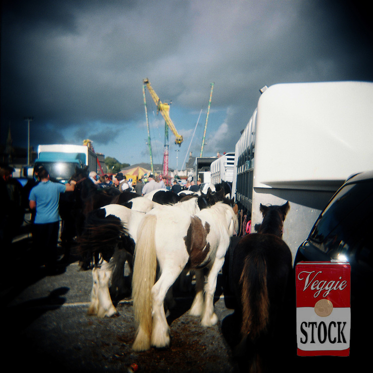Ballinasloe Horse Fair, Co. Galway, Ireland, October 2010.