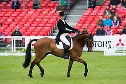 Parsonage Gary, (GBR), Sligo Luckyvalier<br /> Dressage <br /> Mitsubishi Motors Badminton Horse Trials - Badminton 2015<br /> © Hippo Foto - Jon Stroud<br /> 08/05/15