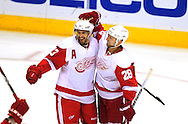 Apr 23, 2010; Glendale, AZ, USA; Detroit Red Wings center Pavel Datsyuk (13) and teammate defenseman Brian Rafalski (28) celebrate after a goal was scored during the third period of game five in the first round of the 2010 Stanley Cup Playoffs at Jobing.com Arena.  The Red Wings defeated the Coyotes 4-1.  Mandatory Credit: Jennifer Stewart-US PRESSWIRE