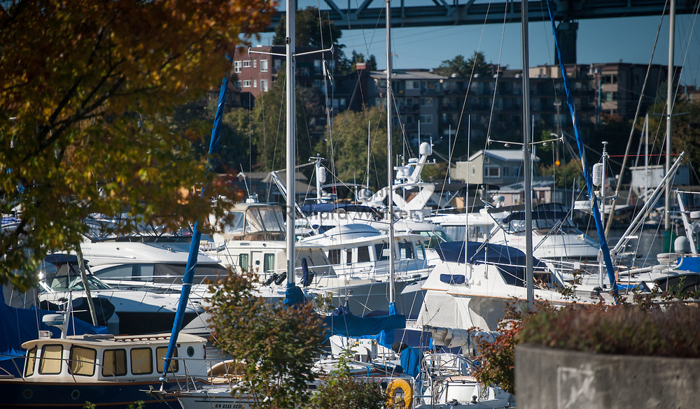 2016 October 11 - Yachts and boats moored near the University District, Seattle, WA, USA. By Richard Walker