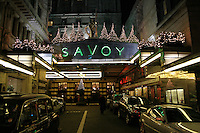 christmas trees on the savoy hotel at night