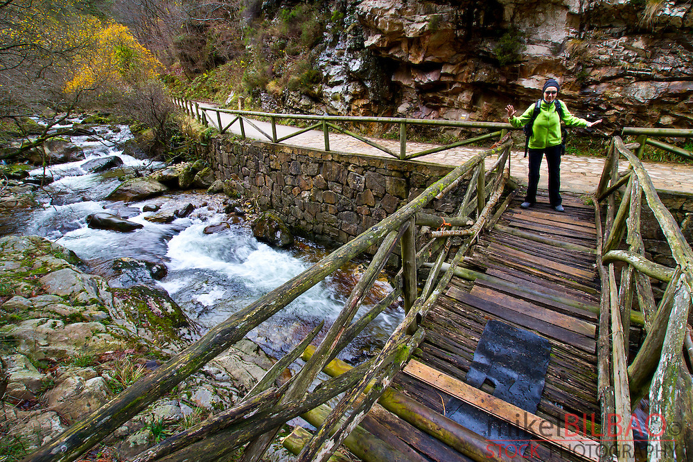 River and wooden bridge. Sobrescobio. Alba river route.  Redes National Park, Asturias, Spain.