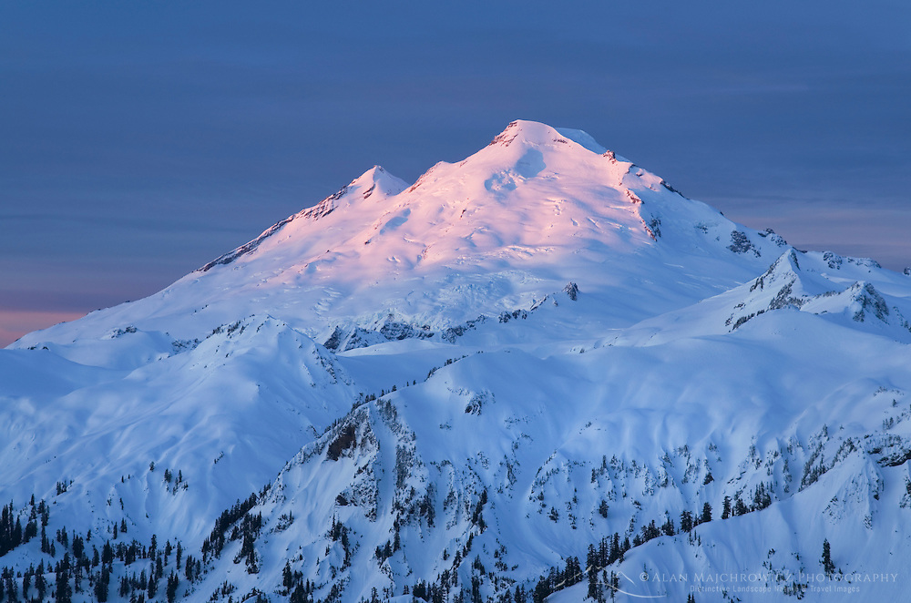 The snows and glaciers of Mount Baker, 10,781 ft (3,286 m) glow in the light of a winter dawn. North Cascades Washington