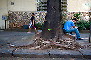 Belo Horizonte_MG, Brasil...Raizes de arvores na calcada da esquina das ruas Claudio Manuel e avenida do Contorno no bairro Funicionarios...The tree roots in the sidewalk of the street corner between Claudio Manuel and Contorno avenue in Funcionarios neighborhood...Foto: LEO DRUMOND / AGENCIA NITRO