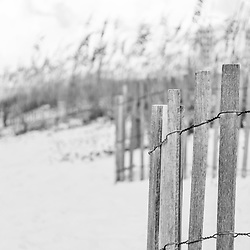 Pensacola Beach Florida beach fence and beach grass black and white panoramic photo. Pensacola Beach is a coastal city in the Emerald Coast area of the Southeastern United States. Panorama photo ratio is 1:3. Copyright ⓒ 2018 Paul Velgos with All Rights Reserved.