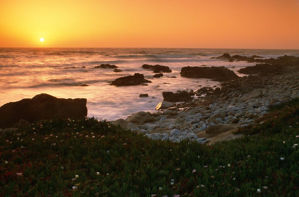 USA, California, Monterey, Alisomar State Beach at sunset
