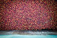 Rwanda's Coffee Economy: 2012-2013