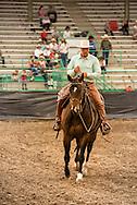 Buck Brannaman, Will James Roundup, Ranch Rodeo, Working Ranch Horse, Hardin, Montana