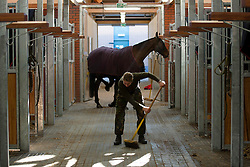 © Licensed to London News Pictures. 07/02/2012. LONDON, UK. A member of the King's Troop Royal Horse Artillery sweeps stables at the troops new purpose built and carbon neutral barracks in Woolwich. Previously based at St John's Wood since 1947, the Royal Artillery's ceremonial unit today arrived at their new home at Napier Barracks in Woolwich Photo credit: Matt Cetti-Roberts/LNP