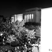 Quixotic Surface performs at night on the south lawn of the Nelson Atkins Museum