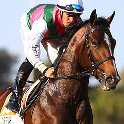 RACE 6 Durban  Golden Horseshoe,