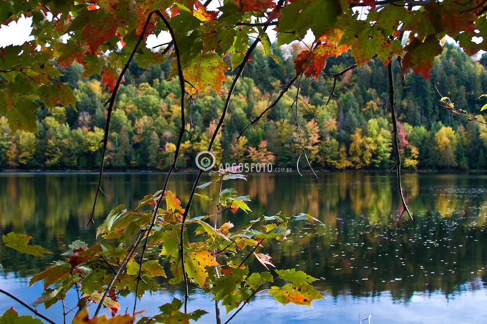 Ste-Agathe , QC, Canada. Arvores coloridas no outono boreal, no hemisferio norte / Autumn (also known as Fall in North American English) is one of the four temperate seasons
