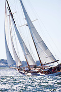 Juno sailing in the Museum of Yachting Classic Yacht Regatta.