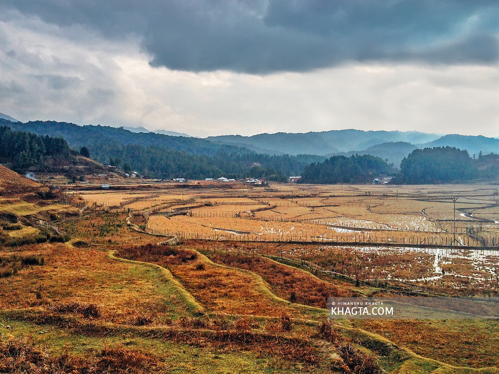 Landscape of the fields at Ziro, Arunachal Pradesh. I took this on christmas 2013, during a month long trip in the North East Frontier states of India.
