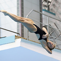 DIVE: Springertag Rostock - FINA Diving Grand Prix 2015 - Saturday