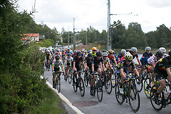 The peloton rides with 40km to go on Stage 3 of the Ladies Tour of Norway - a 156.6 km road race, between Svinesund (SE) and Halden on August 20, 2017, in Ostfold, Norway. (Photo by Balint Hamvas/Velofocus.com)