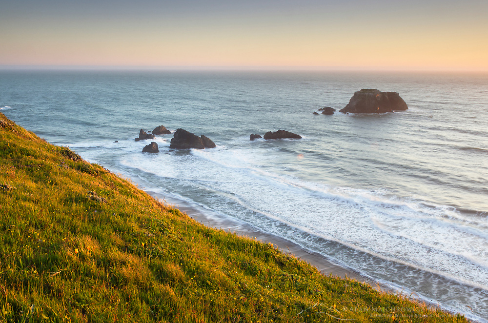 Crashing waves and seastacks along rugged cliffs and bluffs of Sonoma Coast State Park, California