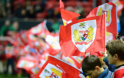 Flags - Mandatory by-line: Dougie Allward/JMP - 05/11/2016 - FOOTBALL - Ashton Gate - Bristol, England - Bristol City v Brighton and Hove Albion - Sky Bet Championship