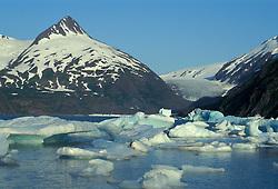 Portage Lake, south of Anchorage, Alaska.