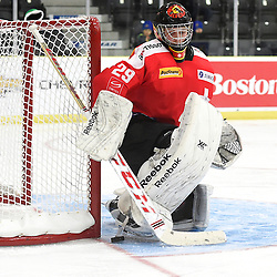 COBOURG, - Dec 18, 2015 -  WJAC Game 11- Team Czech Republic vs Team Switzerland at the 2015 World Junior A Challenge at the Cobourg Community Centre, ON. Philip WUthrich #29 of Team Switzerland makes the save during the second period.<br /> (Photo: Andy Corneau / OJHL Images)