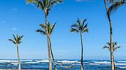 Mauna Lani Resort, Kohala Coast, Island of Hawaii