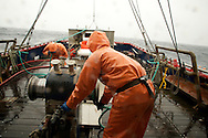 Working in the worst of weather, crew members Brad Burton and Gary Batchelder pull the lines in toward a winch which will help to pull the bags filled with shrimp up to the surface.
