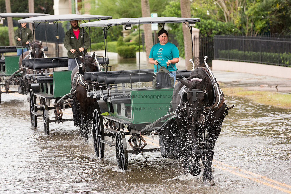 Horse carriages make their way through floodwater along the Battery in the historic district after record breaking storms dumped more than two feet of rain on the lowcountry October 5, 2015 in Charleston, South Carolina.